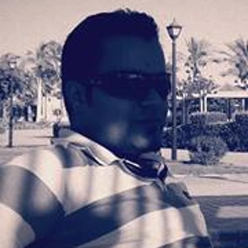 Eng Hamzawy's avatar