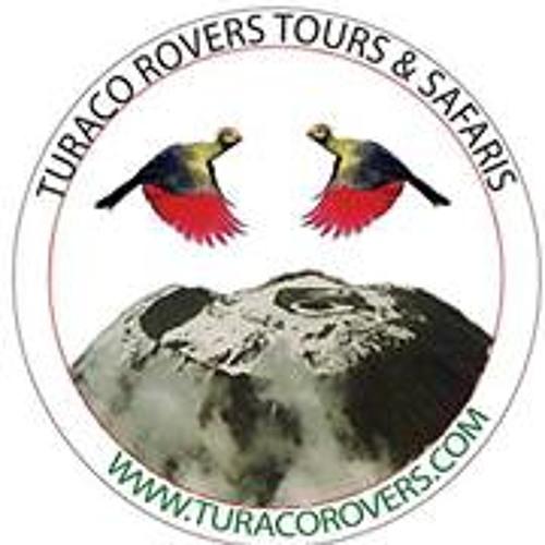 Turaco Rovers's avatar