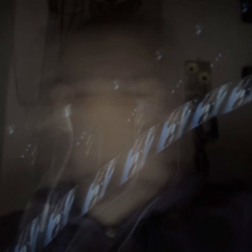 d.o.n.k.e.y.s.'s avatar