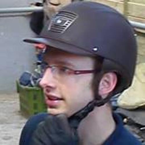 Lionel Schepers's avatar