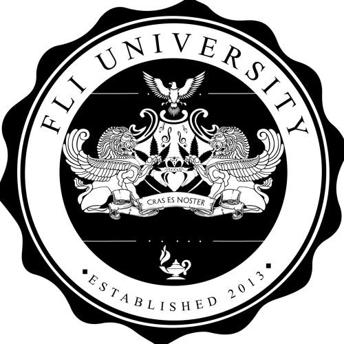 FliUniversity's avatar