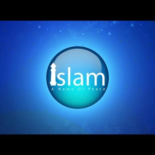 muhammadsaleh's avatar
