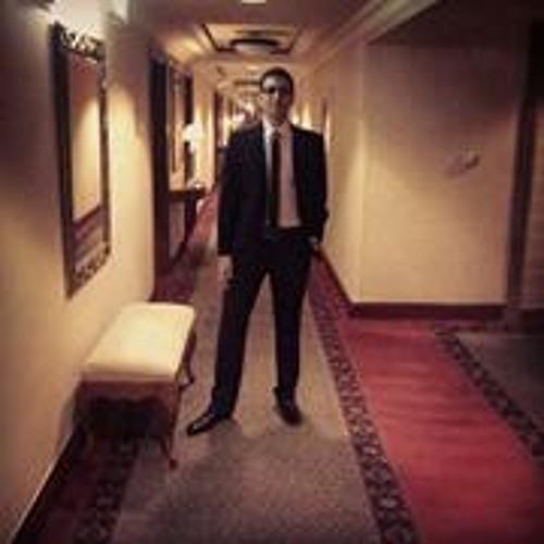Waleed Hisham 1's avatar