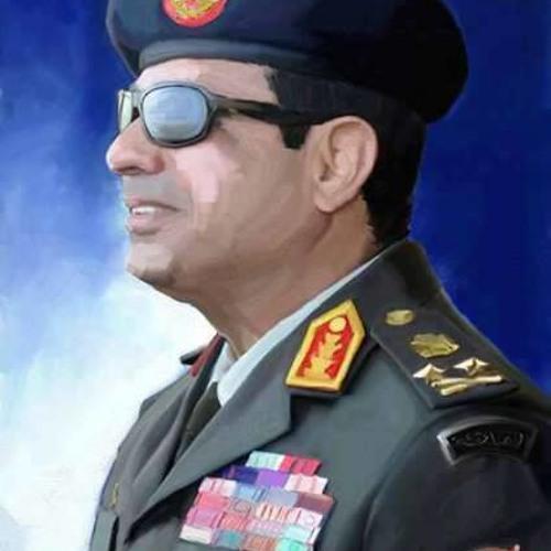 Mahmoud Elhadidi's avatar