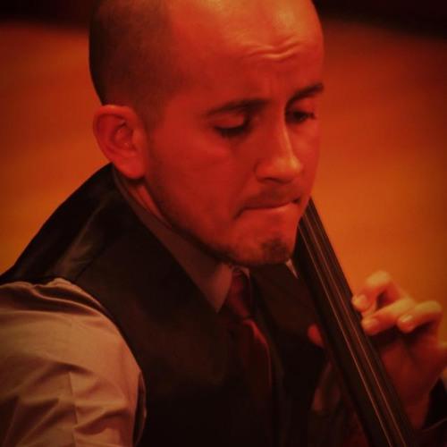 David Hurtado Gómez's avatar