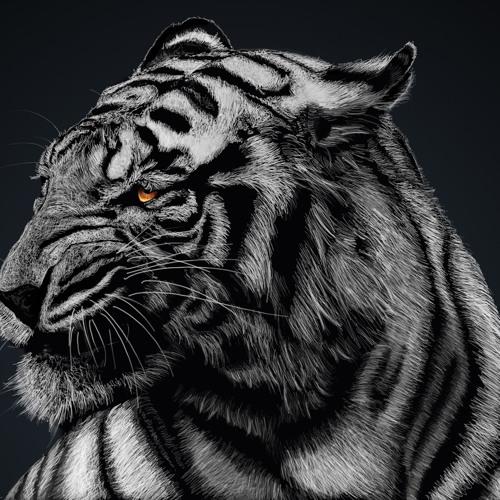 SilverTiger ☠ST's avatar