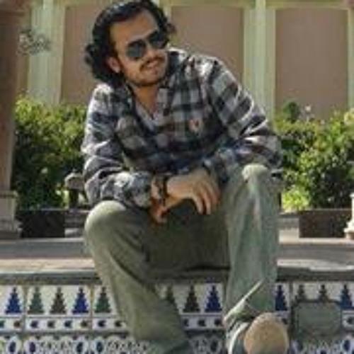 Ahmed Shahin 13's avatar