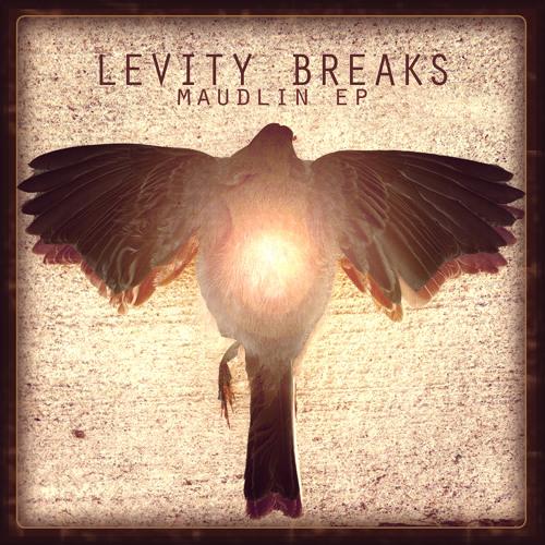LevityBreaks's avatar