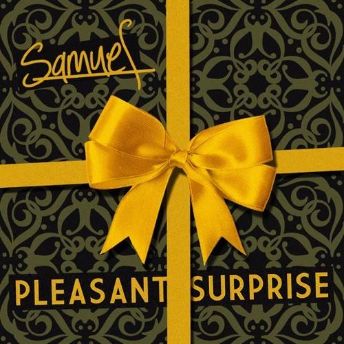 Pleasant Surprise!!'s avatar
