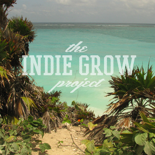 Indie Grow Project's avatar