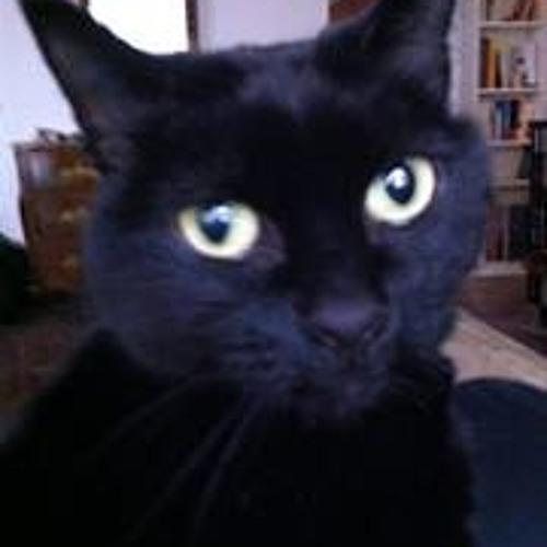 Kimou Yolo's avatar