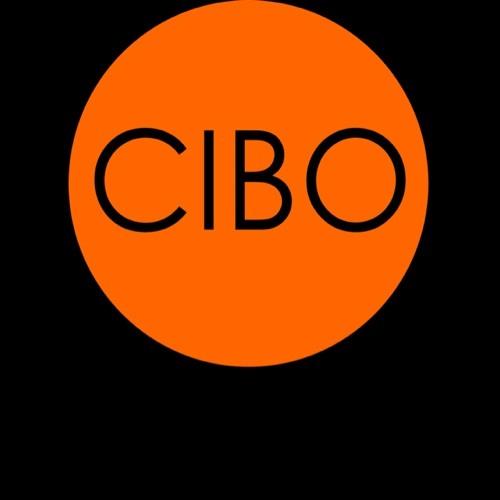 BCIBO's avatar