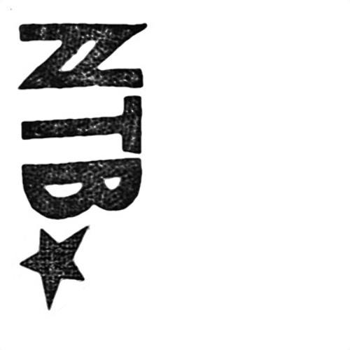 naturtrueb-records's avatar
