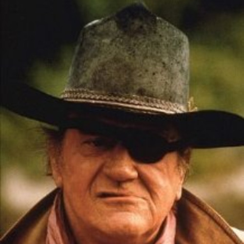 Rooster Cogburn 2's avatar