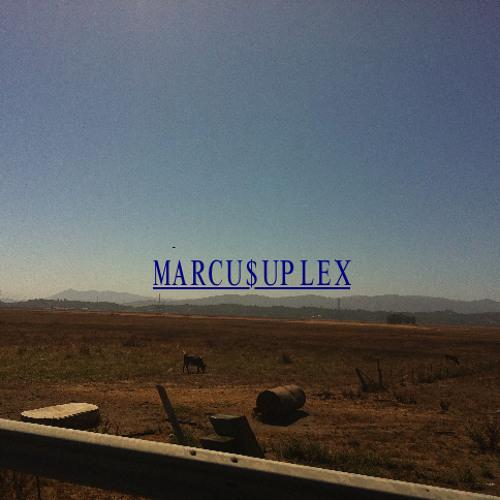 MARCU$UPLEX's avatar