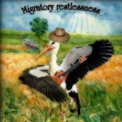 Migratory restlessness's avatar
