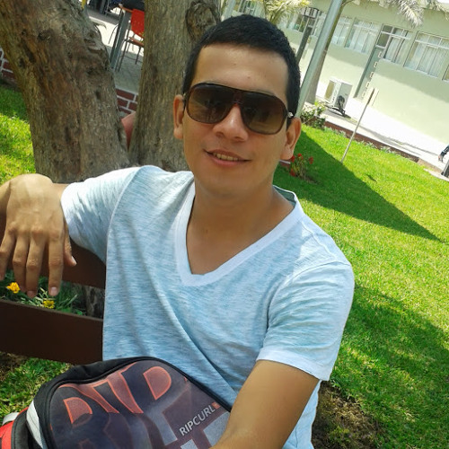 Carlos Andre Vergara's avatar