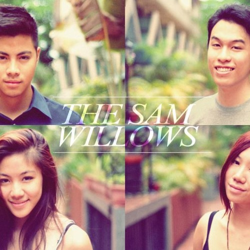 The Sam Willows's avatar