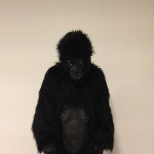 Gorilla Pool's avatar