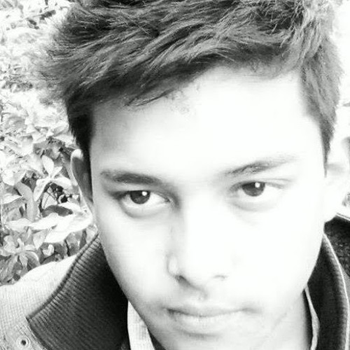 Prabin Shrestha 5's avatar