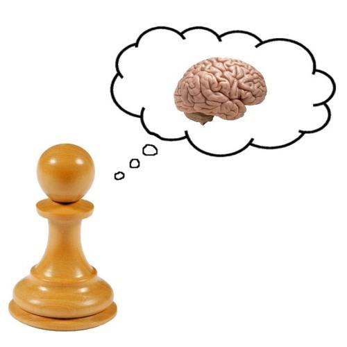 Pawn's Logic ™'s avatar