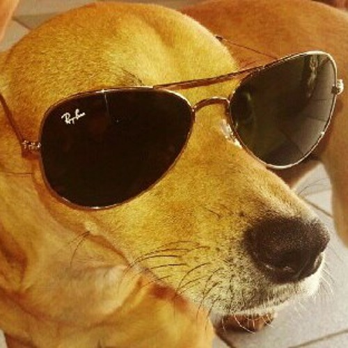 sherlockbr's avatar