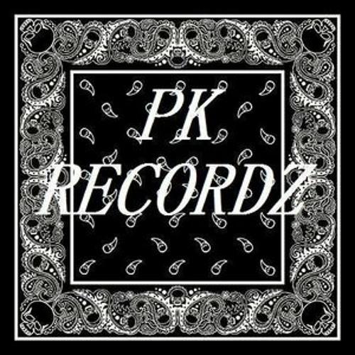 PK Recordz's avatar