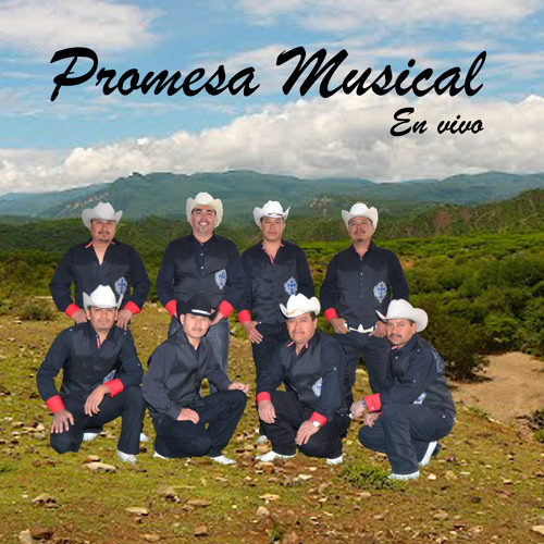 Promesa Musical's avatar
