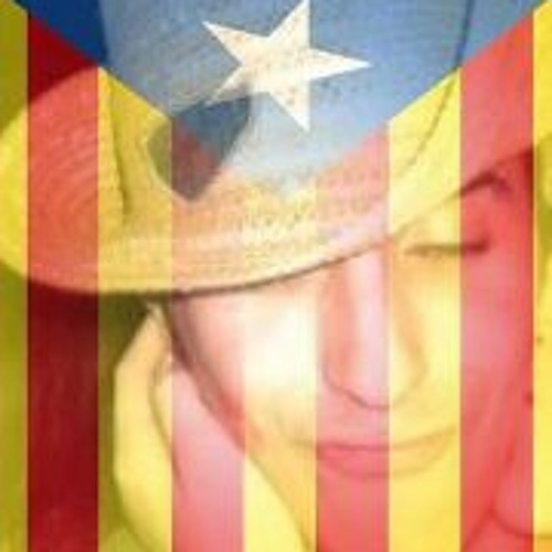 Toni Sanchez Luque's avatar