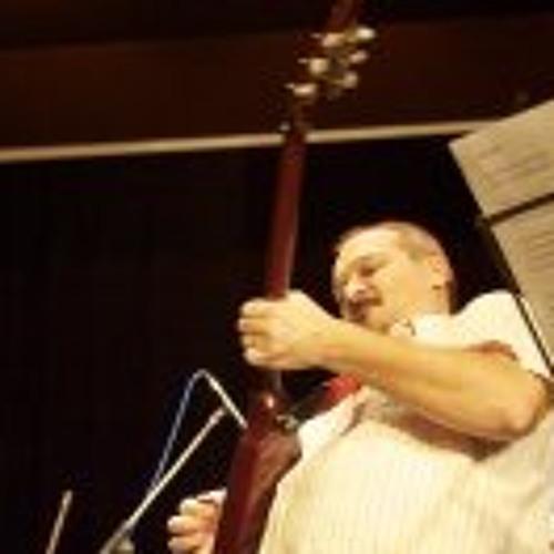Nenad Resnik's avatar
