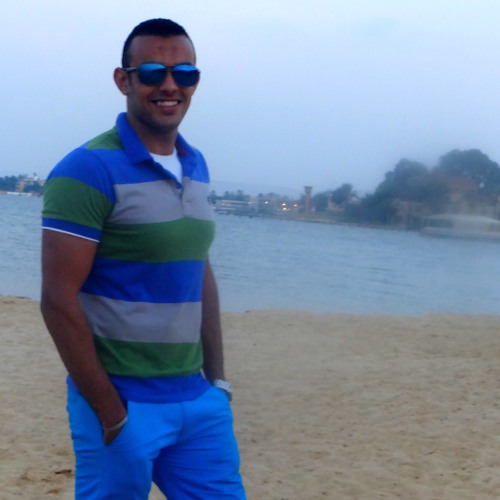 Mohamed Elzarka's avatar