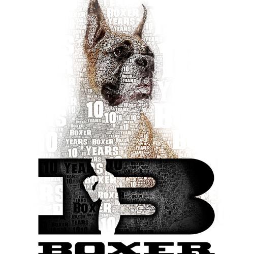 boxer recordings's avatar
