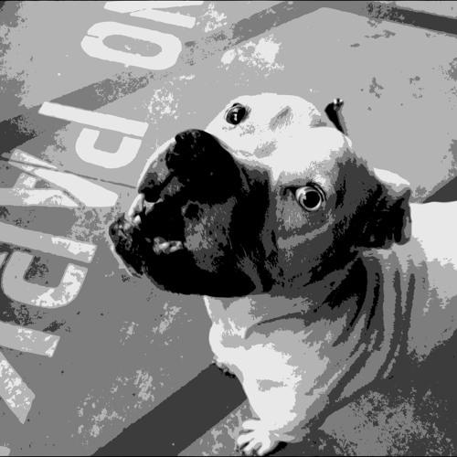 photolab's avatar