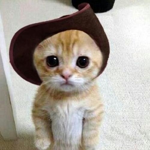 pushnboots's avatar