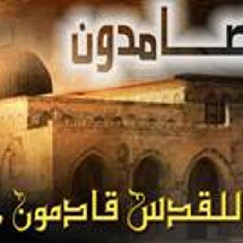 Mohamed Abdelbaky's avatar