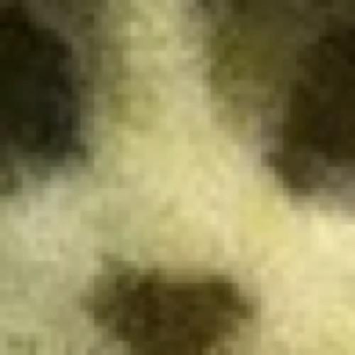 machtenmonster's avatar