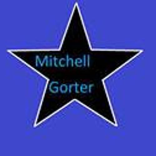 Mitchell Gorter's avatar