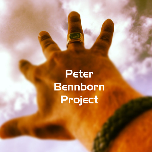 Peter Bennborn Project's avatar