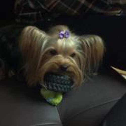 Tico Gae's avatar