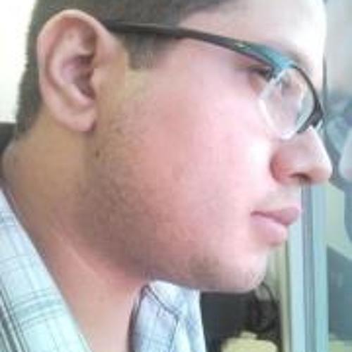 raphaeljq's avatar
