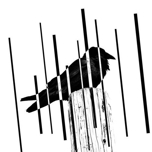 False Positives's avatar