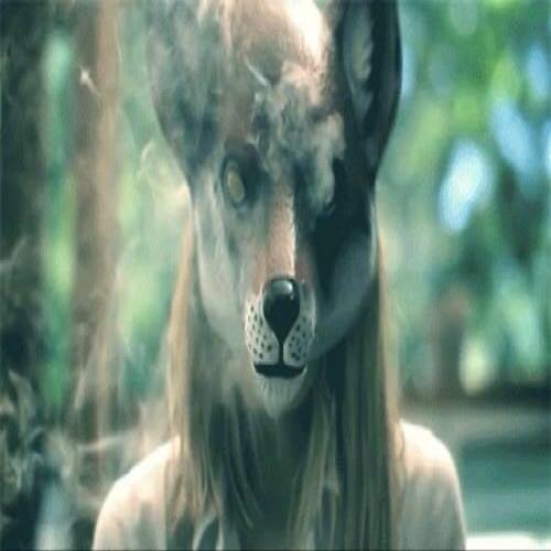 bturmina's avatar