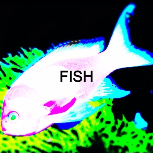 bobby_fish's avatar
