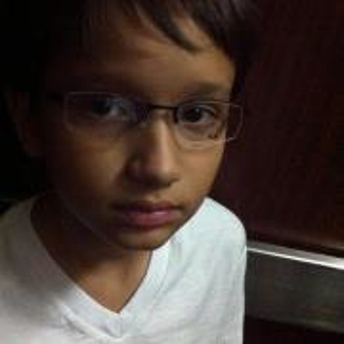 Pedro Vitor Rissin's avatar