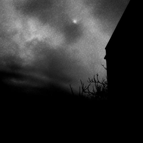 Vapour Night's avatar