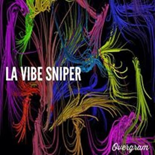 la vibe sniper's avatar