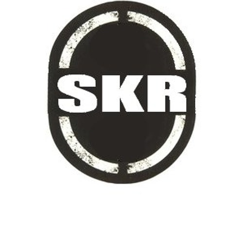 SKR Project's avatar