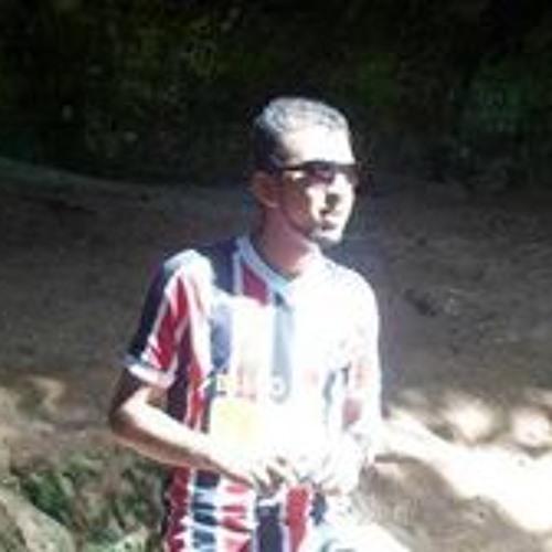 Lucas Duarte 62's avatar