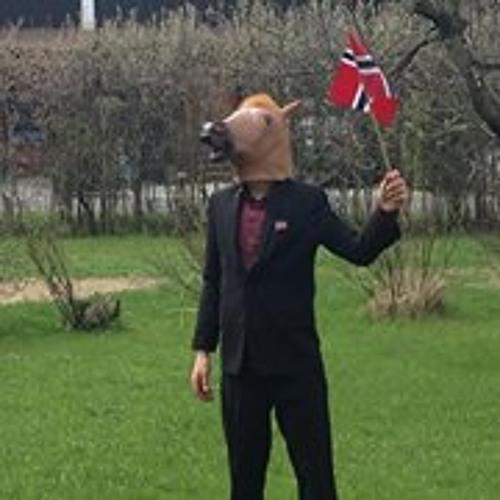 Tobias Adolphson's avatar