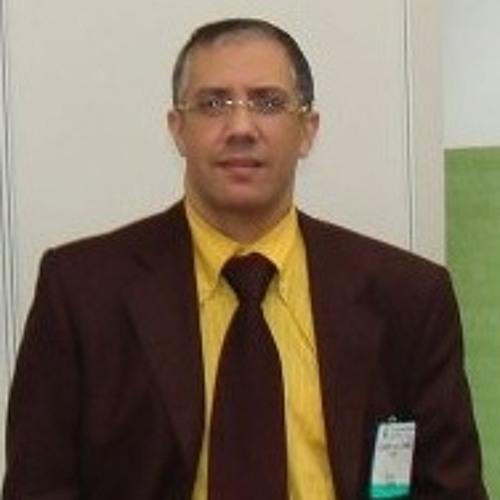 Hossam Abdel Hamid2's avatar